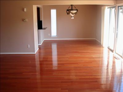 The Cleaning Company of South Tampa | Move In/Move Out Cleaning